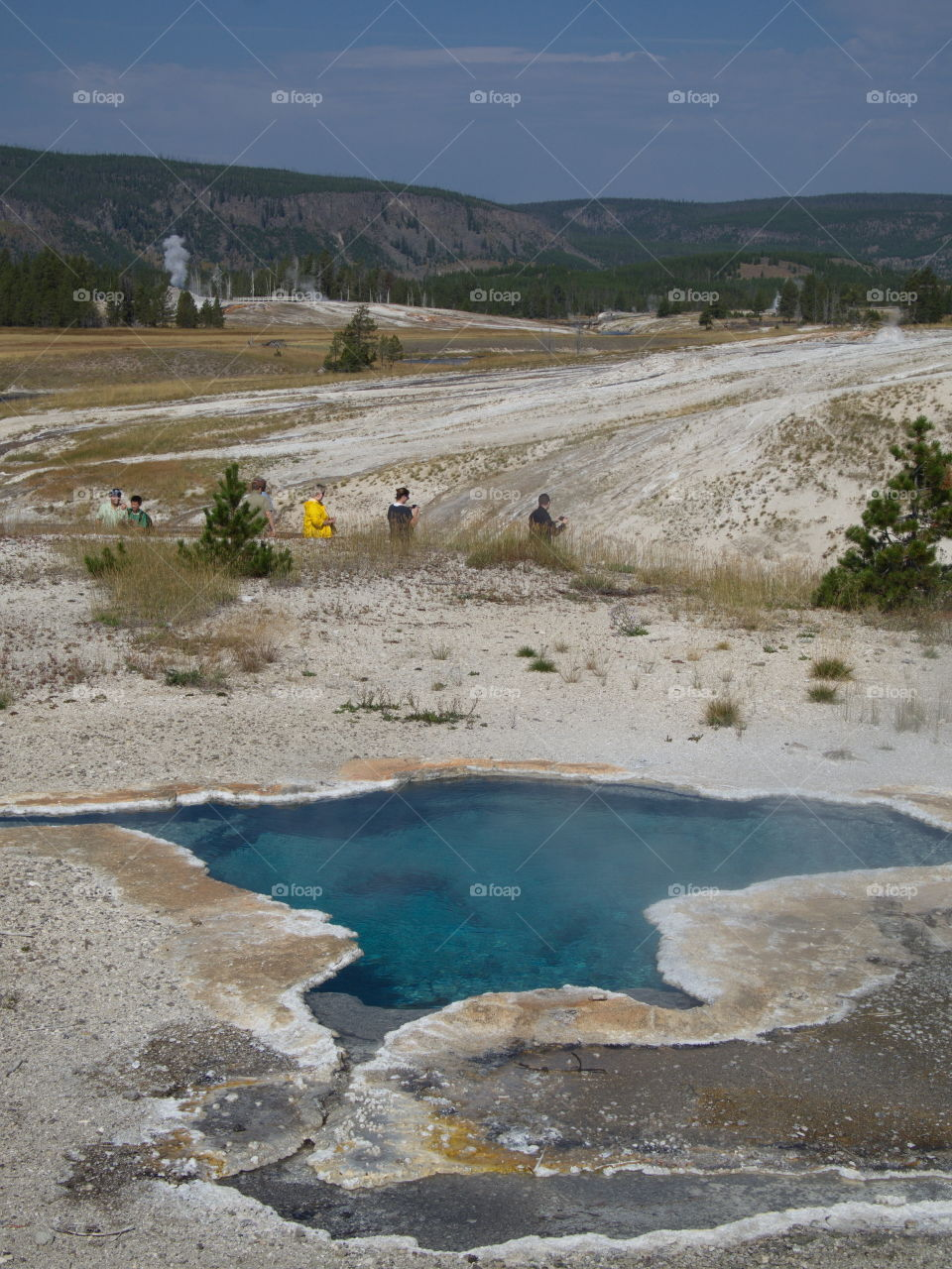 The magnificent turquoise waters of Blue Star Spring on Geyser Hill in Yellowstone National Park in Northern Wyoming on a summer day.