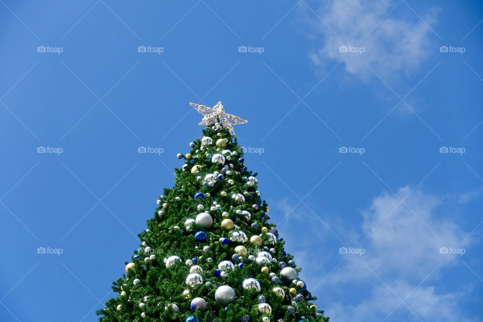 Christmas tree decorated by blue, gold and silver ornaments is outside.