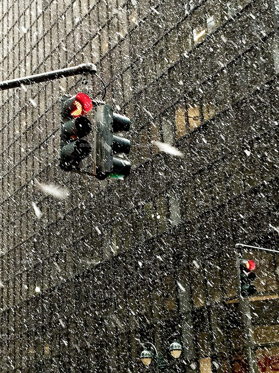 Spring Snow Fall in New York. Spring Snow Fall in New York