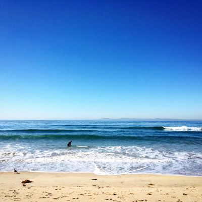 Huntington Beach Coast