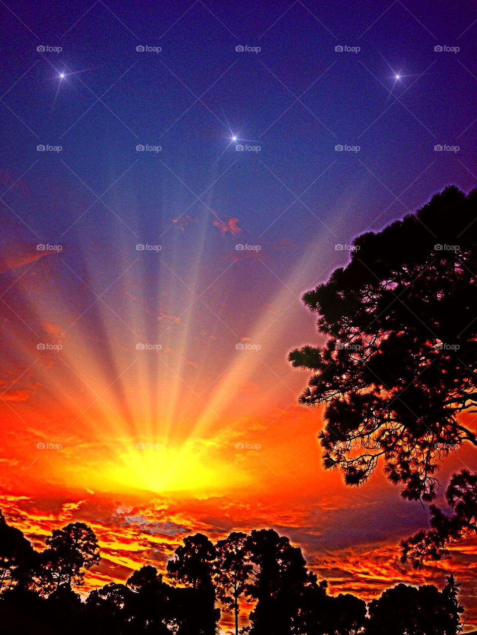 Starlight sunset