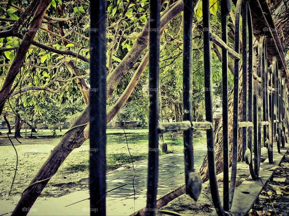 park ( garden)  boundary line