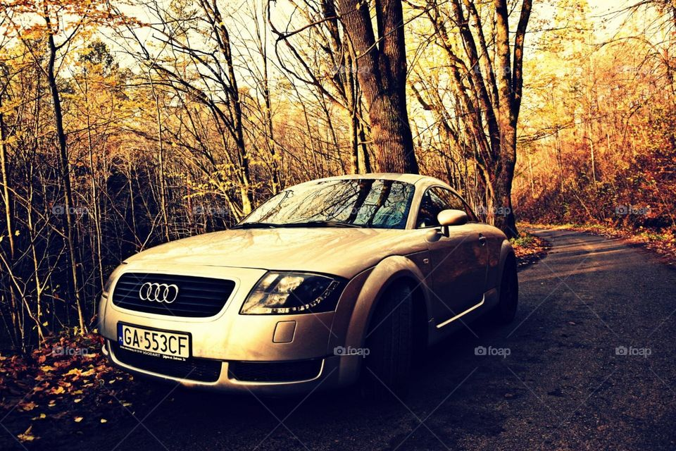 Audi on the road