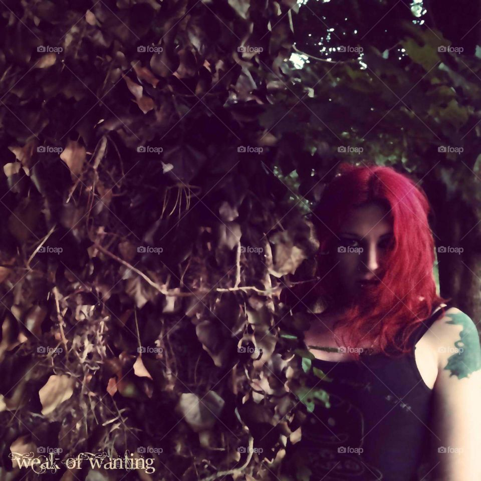 old tree with ivy and girl