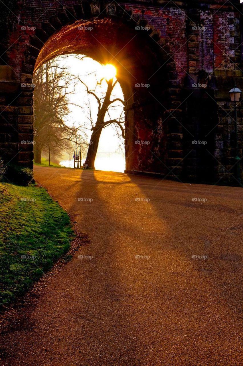 Under The Bridge In England, Sunrise In England, Avenham Park In Preston England, Light Shining On Landscape Portrait