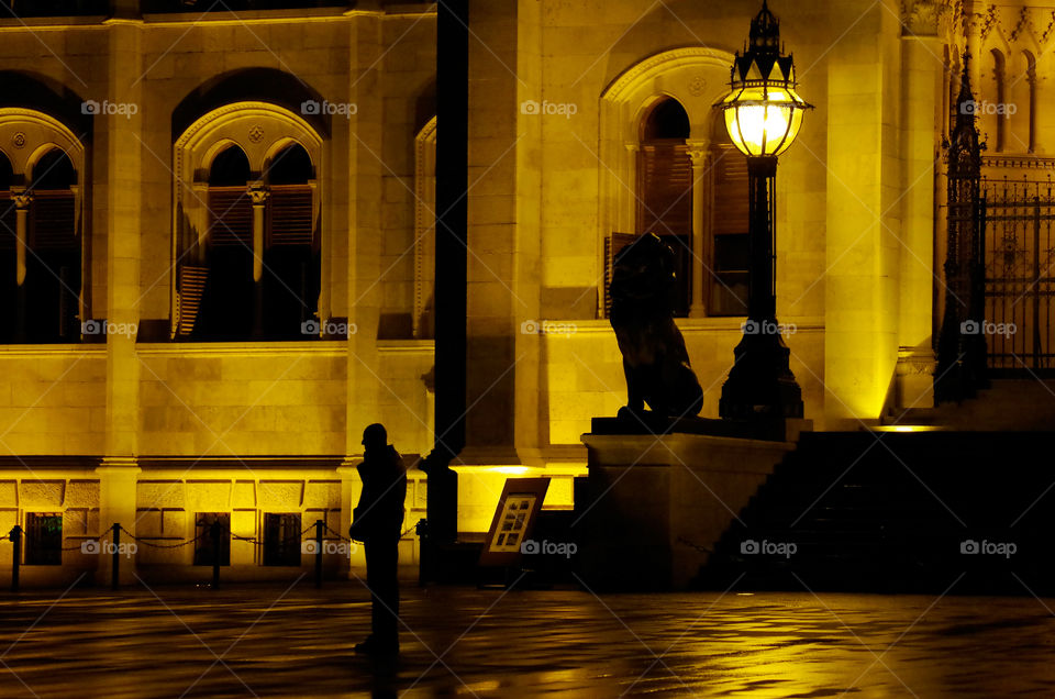 Silhouette of a male adult talking on his mobile phone while standing in front of the illuminated Hungarian Parliament Building in Budapest.