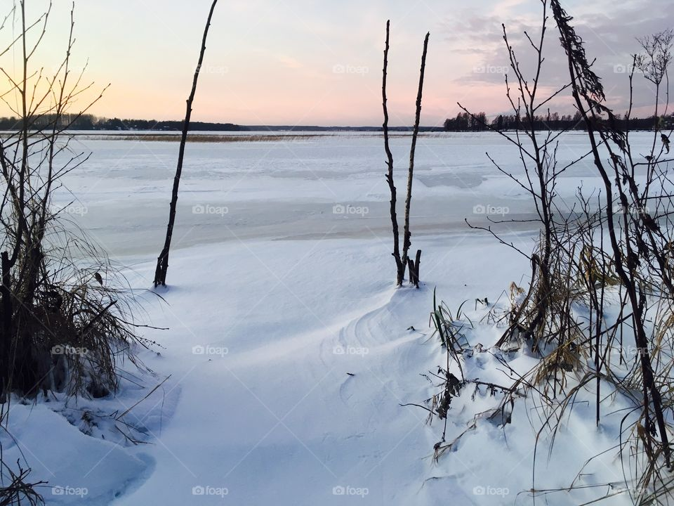 Beautiful Calm Winter Beach with sunset colour. Branches and hay appear under the snow.