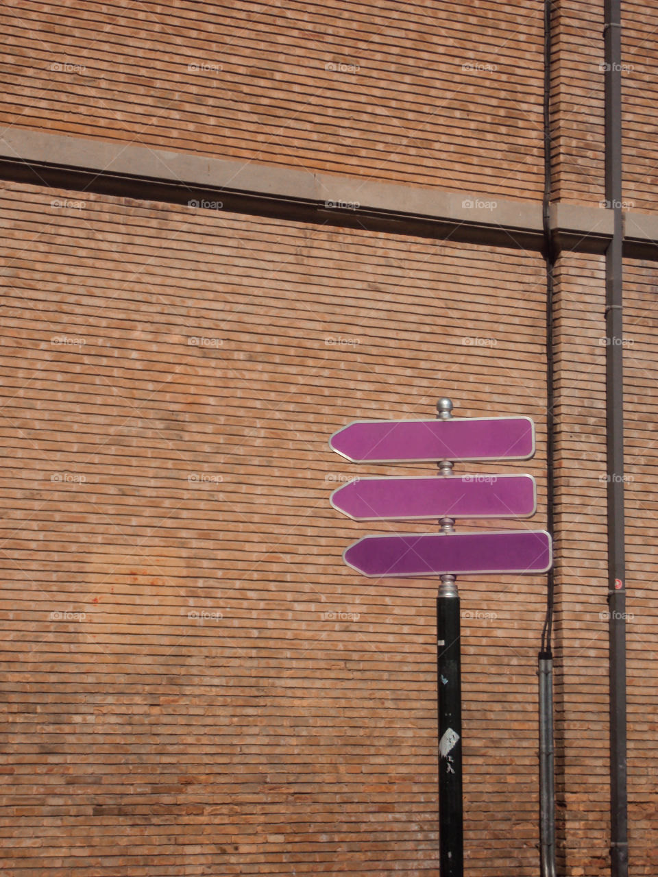 Purple arrows signpost at the street